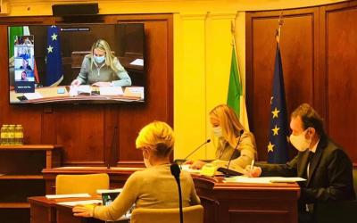 Indagine conoscitiva in Commissione Diritti umani sui livelli di tutela in Italia e nella realtà internazionale